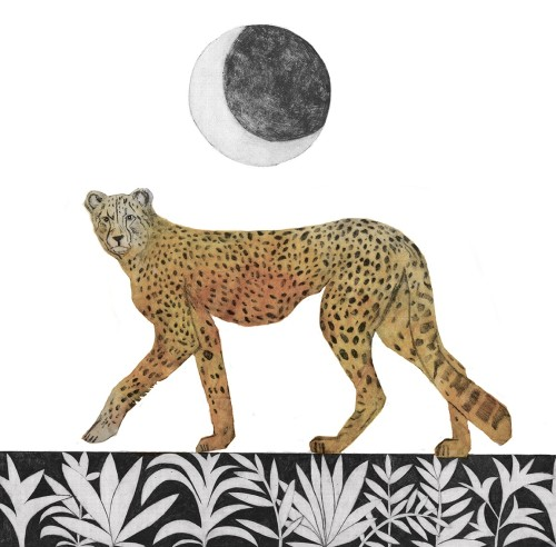 Beatrice Forshall, Cheetah (Unframed)