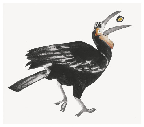 Beatrice Forshall, Ground Hornbill (Framed)