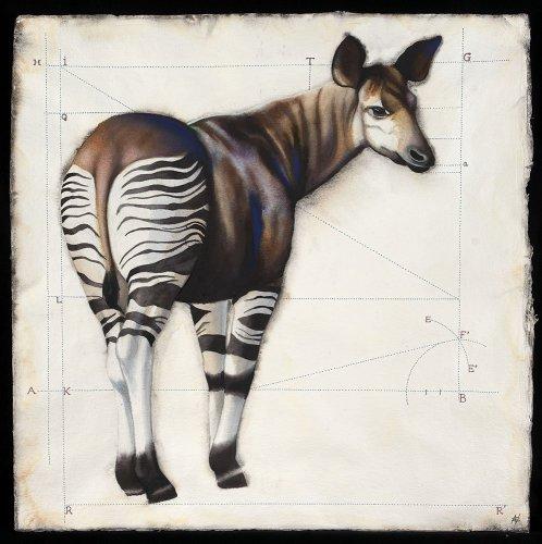 Nikki Stevens, Okapi