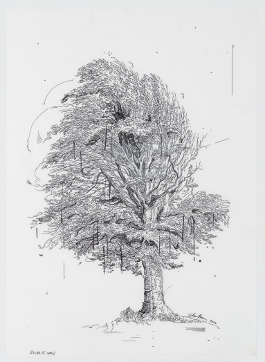 Glenn Brown, Drawing 28, Gone to Earth (after De Gheyn II), 2014