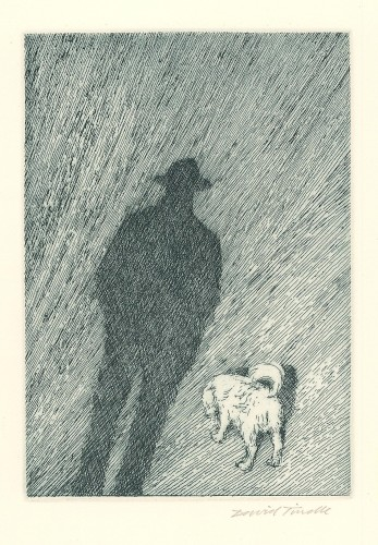 My Shadow and the Dog, 1996