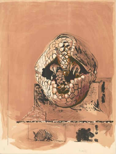 Armadillo, 1968