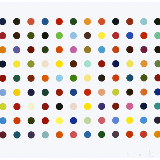 Damien Hirst  Ellipticine, 2007  Etching printed on 350 gsm Hahnemuhle paper  149 x 122cm framed  Limited Edition 75  (Signed front and numbered verso)  Signed