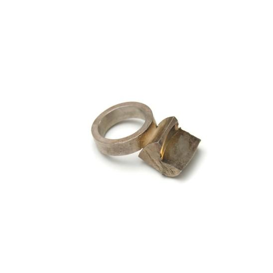 Rudolf Bott, Ring, 2001
