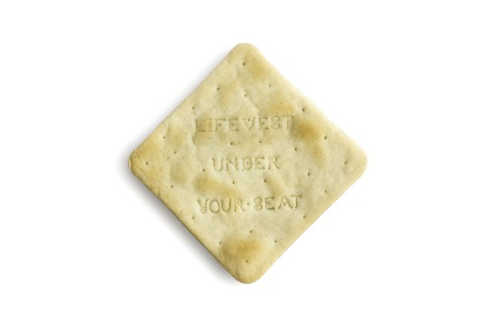Kathleen Reilly Life Vest under your Seat, 2019 Cracker