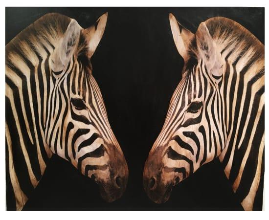 Anke Schofield, Double Zebra