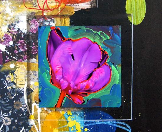 James Jensen, Tulip Purple 10218