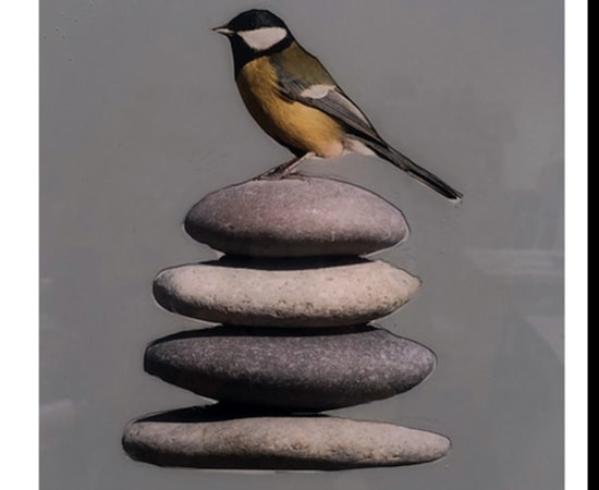 Anke Schofield, Stones 3