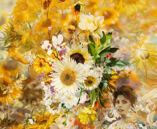 Antal Goldfinger, Sunflower 1956