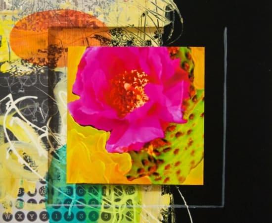 James Jensen, Cactus Series 0457
