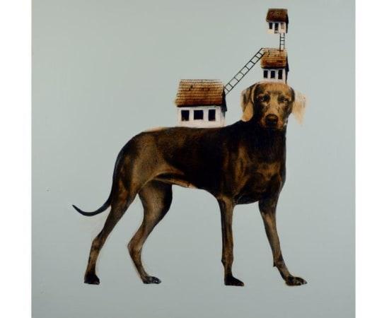 Anke Schofield, Dog House