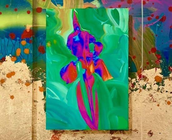 James Jensen, Purple Iris