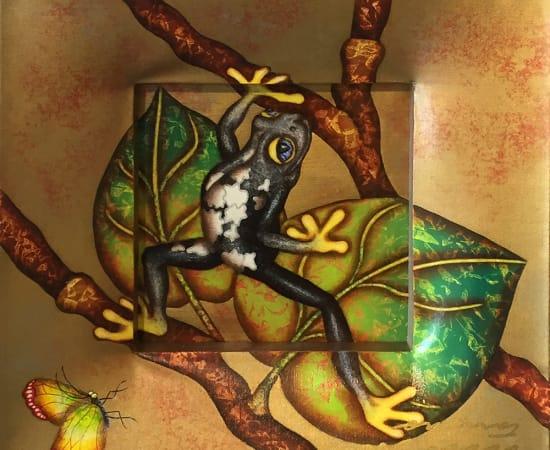 Luis Sottil, Cautious Black Frog