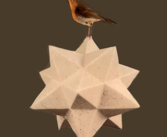 Anke Schofield, Birdy V