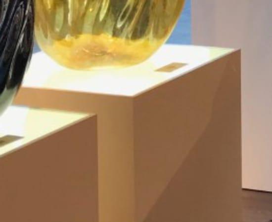 Robert Kaindl, Amber Gold Black Lip - Anthias