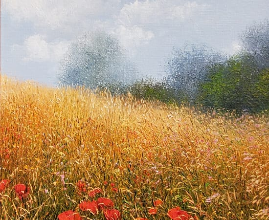 Patrice Marchal, Coquelicots