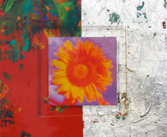 James Jensen, Sunflower Series 00072