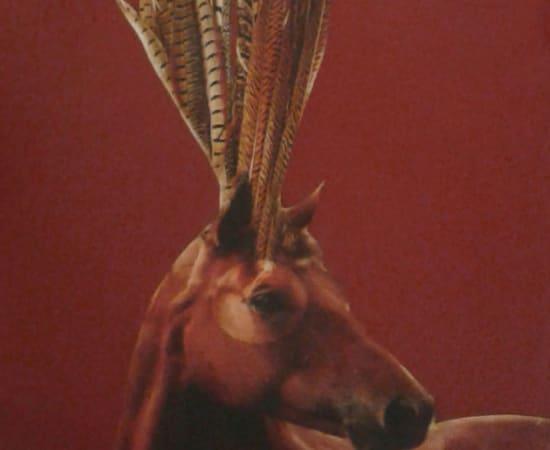 Anke Schofield, Horse Feathers II