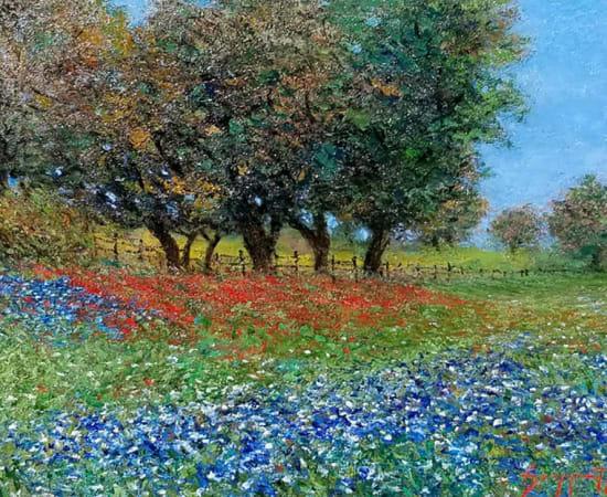 James Scoppettone, Texas Blue Bonnets