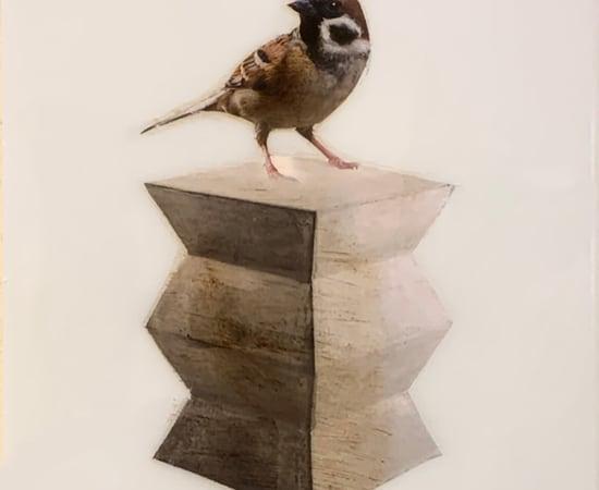 Anke Schofield, Birdy I
