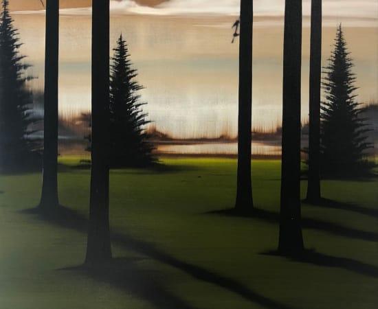 Hamilton Aguiar, 18072 Hidden Lake