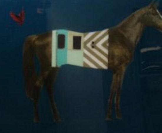 Anke Schofield, Horse Train