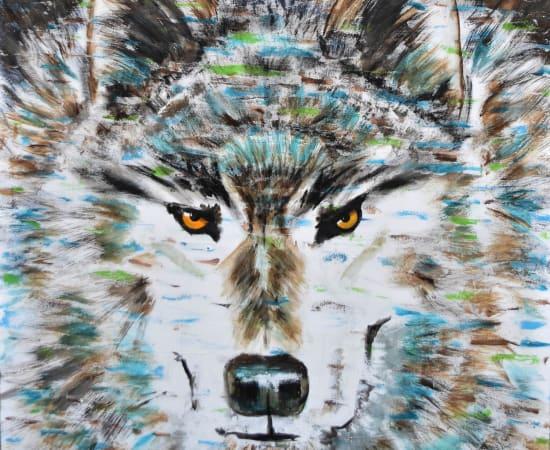 Shawndell, Cry Wolf