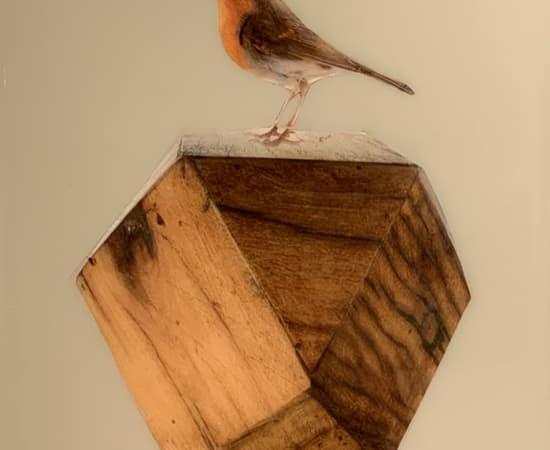 Anke Schofield, Birdy VII 12x12