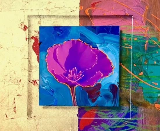 James Jensen, Poppy Purple 10160