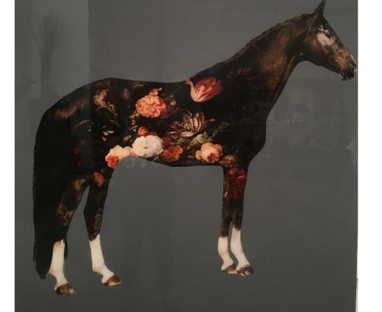 Anke Schofield, Garden II