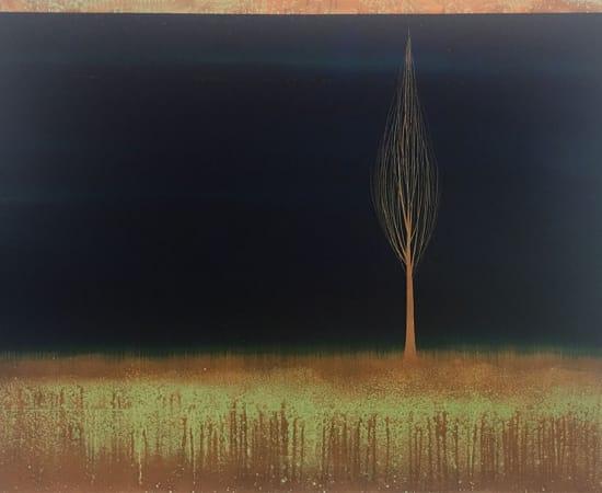 Hamilton Aguiar, 17051 Solitude