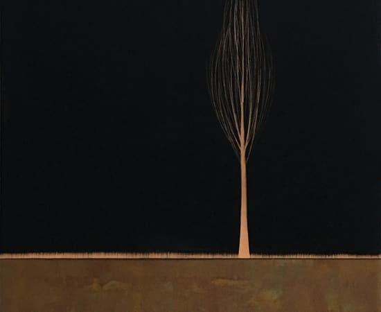 Hamilton Aguiar, 17033 Solitude