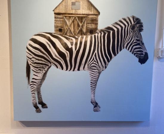 Anke Schofield, Zebra House