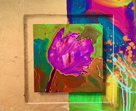 James Jensen, Tulip Purple 10157