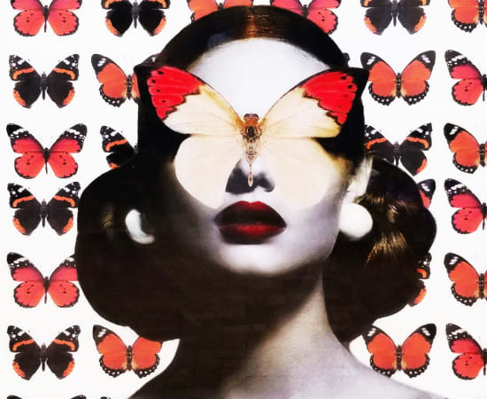 Anke Schofield, In the Field of Red Butterflies