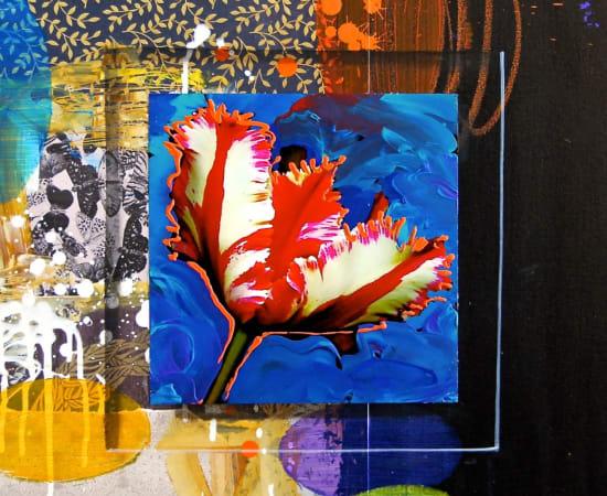 James Jensen, Tulip White Red 10220
