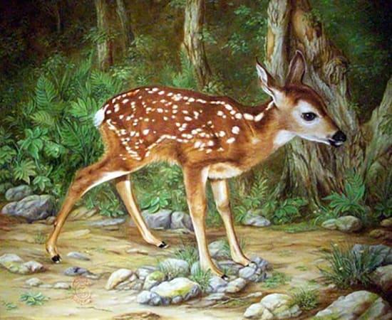 Antal Goldfinger, Bambi