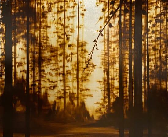 Hamilton Aguiar, 20026 Into the Woods