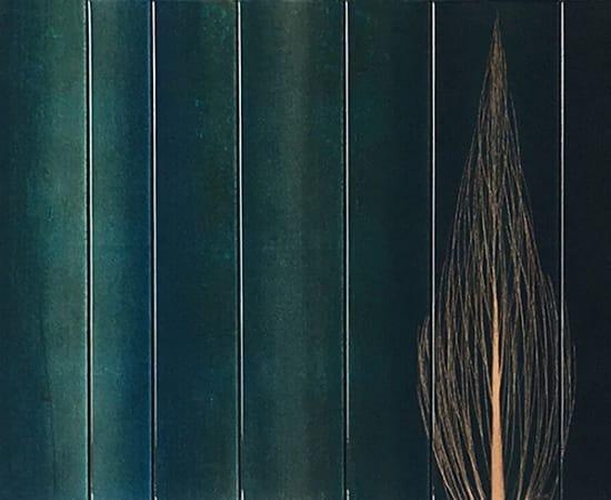 Hamilton Aguiar, 17071 Cores