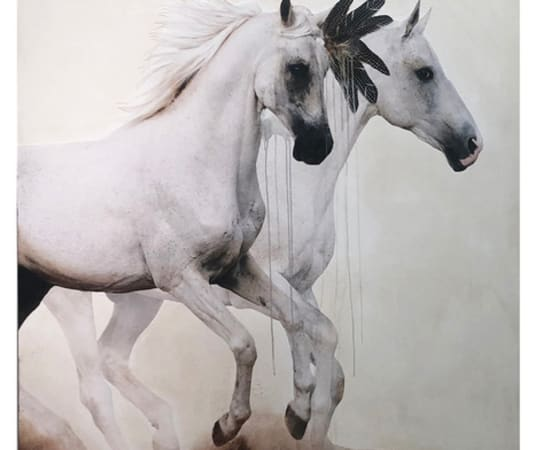 Anke Schofield, Afternoon Trot