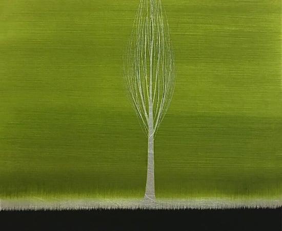 Hamilton Aguiar, 17075 Solitude