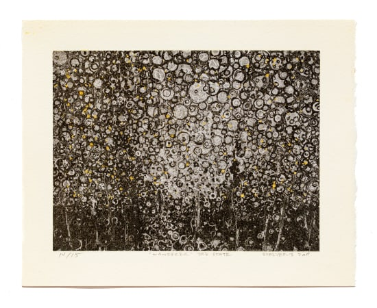Randall Stoltzfus, The Wanderer 3rd State, 2011-2019