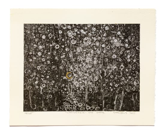 Randall Stoltzfus, The Wanderer 5th State, 2011-2019