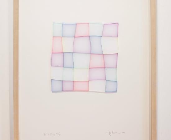TOM HENDERSON, Fluid Order * 2, 2017
