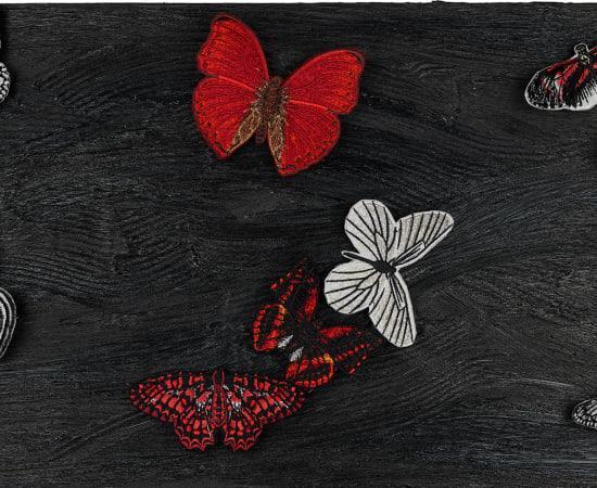 Stephen Wilson, Midnight Butterfly Study