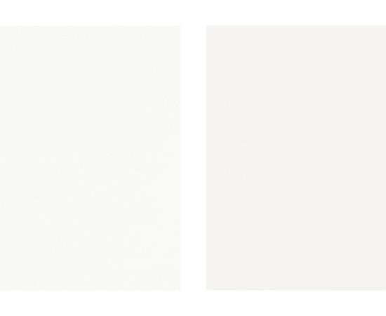 Takashi Tomo-oka, White Magnolia 2, Shiromokuren, 2014