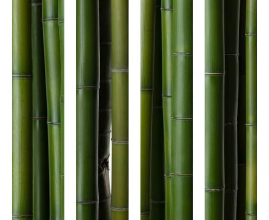 Takashi Tomo-oka, Bamboo 3, Take, 2019