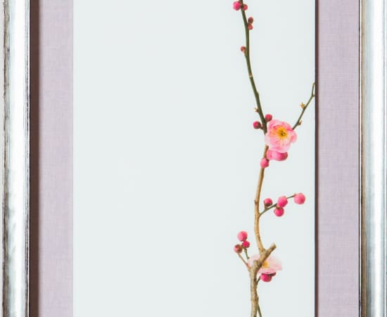 Takashi Tomo-oka, Red Plum Blossoms 4, 2020