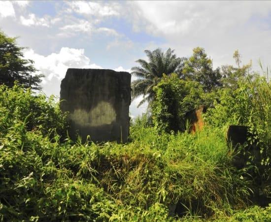 Macline Hien, Ruines #6, 2014