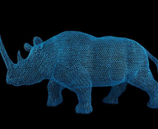 Eka Acosta, Blue Rhino